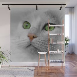 White Cat wit Green Eyes Wall Mural