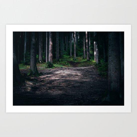 Dream Woods Art Print