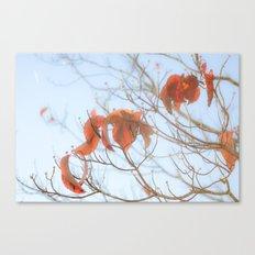 falling atumn leaves Canvas Print