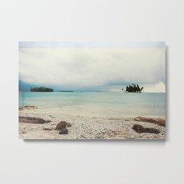 Saltwater Metal Print