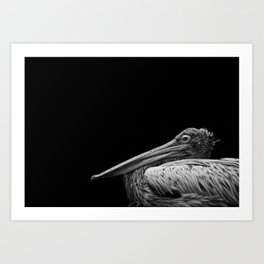 Captain Beaky Art Print