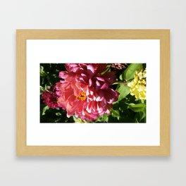 Ombre flower Framed Art Print