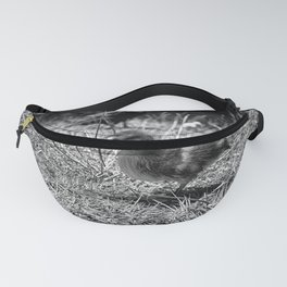 Little Duckie II - Black & White Fanny Pack