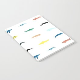 Swimmers Notebook