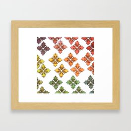 Wood Rainbow Florets Framed Art Print