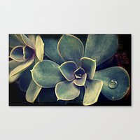 succulent Canvas Prints featuring Succulent by KunstFabrik_StaticMovement Manu Jobst