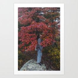 FliFli Art Print