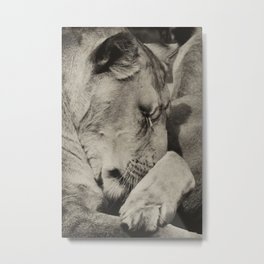 Dreamtime Metal Print