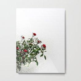 Rambling Roses Metal Print