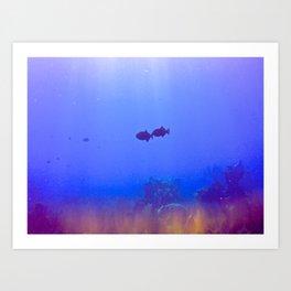 Reef madness Art Print