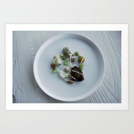 Nautilus, plate Art Print