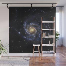 Spiral Galaxy M101 Wall Mural
