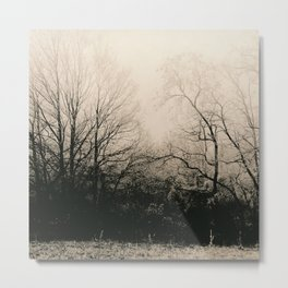 Frozen Dark Forest Metal Print