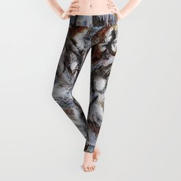 Gray Wolf Watches and Waits Leggings