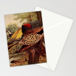 Neltje Blanchan - Bird Neighbours (1903) - Northern Flicker Stationery Cards