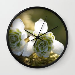 Snowdrops in LOVE Wall Clock