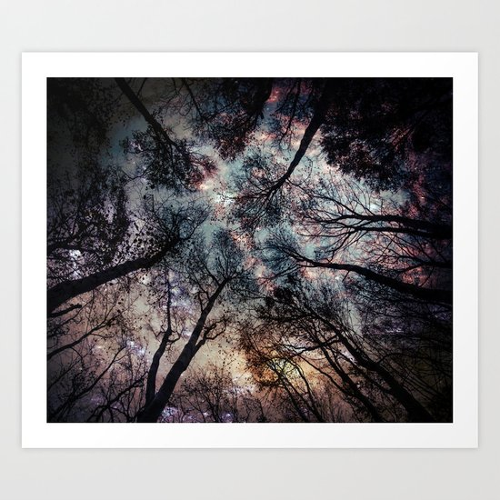 Starry Sky in the Forest by mariannamills
