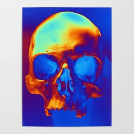 Skull in blue and gold Poster