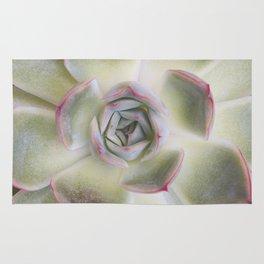 Green and Pink Desert Succulent Rug
