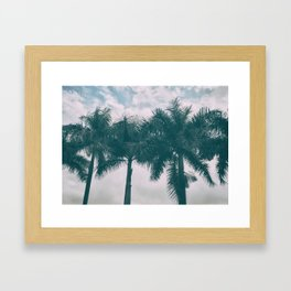 Palm Trees in tropical climate Framed Art Print