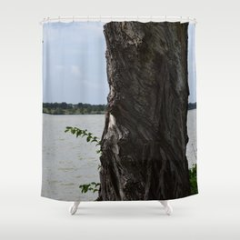 Twisted Tree Trunk Shower Curtain