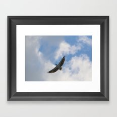 Wingspan Framed Art Print
