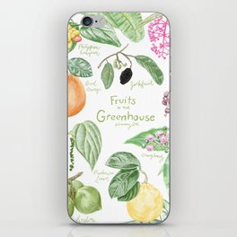 Wintertime Fruit in the Greenhouse iPhone Skin