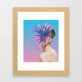 Deceptions Framed Art Print