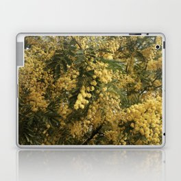 Nature marvels us with simple things Laptop & iPad Skin