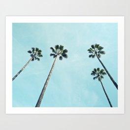 Towering Palms Art Print