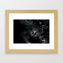 Death and life Framed Art Print