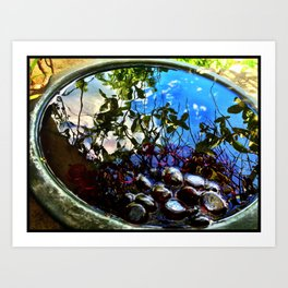 Reflection Pool Art Print