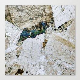 Dolerite 05 - Diving Platypus Canvas Print