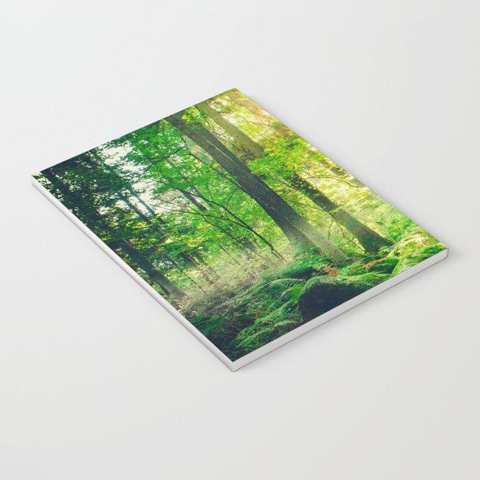 Down the dark ravine II Notebook