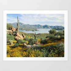 Arizona Blooms Art Print