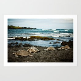 Hawaii Black Sand Beach with Sea Turtles Art Print