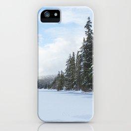 Frozen Over iPhone Case
