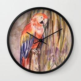 Macaw in Foliage Waterfall  Wall Clock