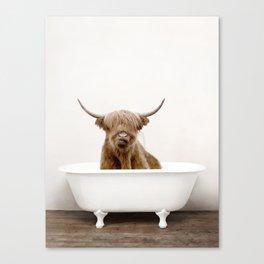 Highland Cow in a Vintage Bathtub (c) Canvas Print