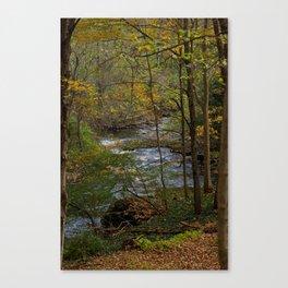 Harlem Valley Trail Canvas Print
