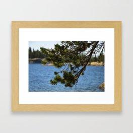 Lake Vibes Framed Art Print