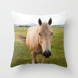 Lucky II Throw Pillow