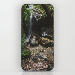 Deep into the Rainforest iPhone Skin
