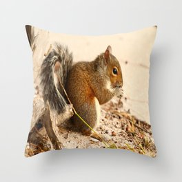 Squirrels Meal Throw Pillow