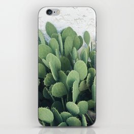 Cactus Cacti Green Desert iPhone Skin