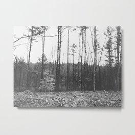 Autumn 9 Metal Print