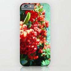 Brightening II iPhone 6s Slim Case