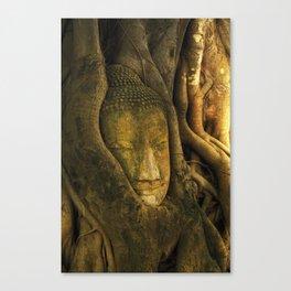 Buddha - Ayutthaya - Thailand Canvas Print