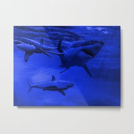 Barry Nehr - Blue Great White Metal Print