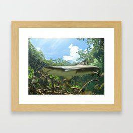 Magic in the Mangroves Framed Art Print